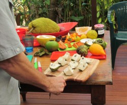 Fruit Tasting Tours – Cape Trib Farm