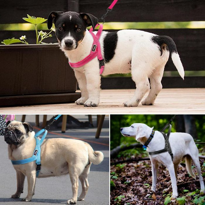 No Pull Dog Harness – Products Marketplace