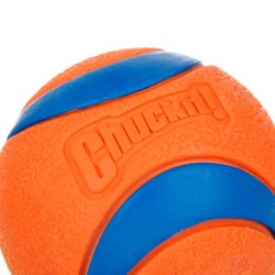 Orange Rubber Ball for Dog – Products Marketplace