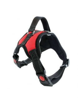 dog harness manufacturer