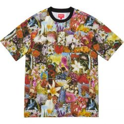 Supreme Dream S/S Top – Streetwear Official