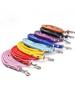 Wholesale Leather Dog Leashes Manufacturers Leather Leashes For Small Dogs