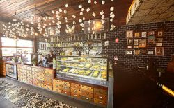 Foods and Beverage Outlets | Dreamworld