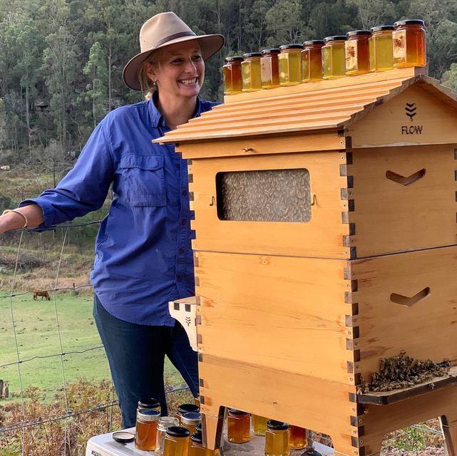 Apiary Bundle – Western Red Cedar 6 Frame – Flow Hive