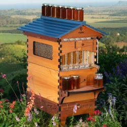 Flow Hive 2 Cedar 6 Frame Beehive