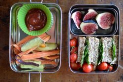 90 Healthy Kids' Lunchbox Ideas with Photos! – Super Healthy Kids